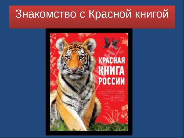 Знакомство с Красной книгой