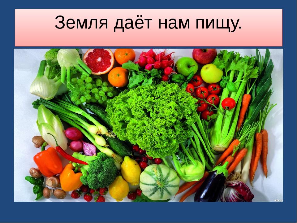 Земля даёт нам пищу.