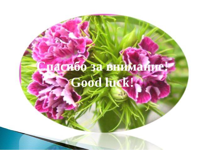 Спасибо за внимание! Good luck!