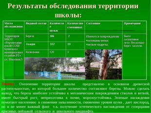 Результаты обследования территории школы: Вывод: Озеленение территории школы