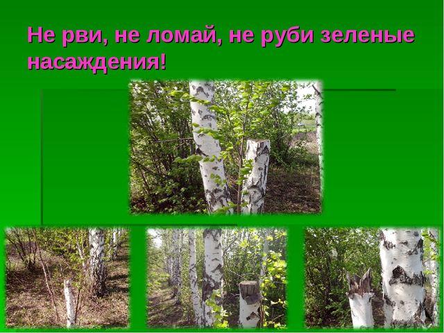Не рви, не ломай, не руби зеленые насаждения!
