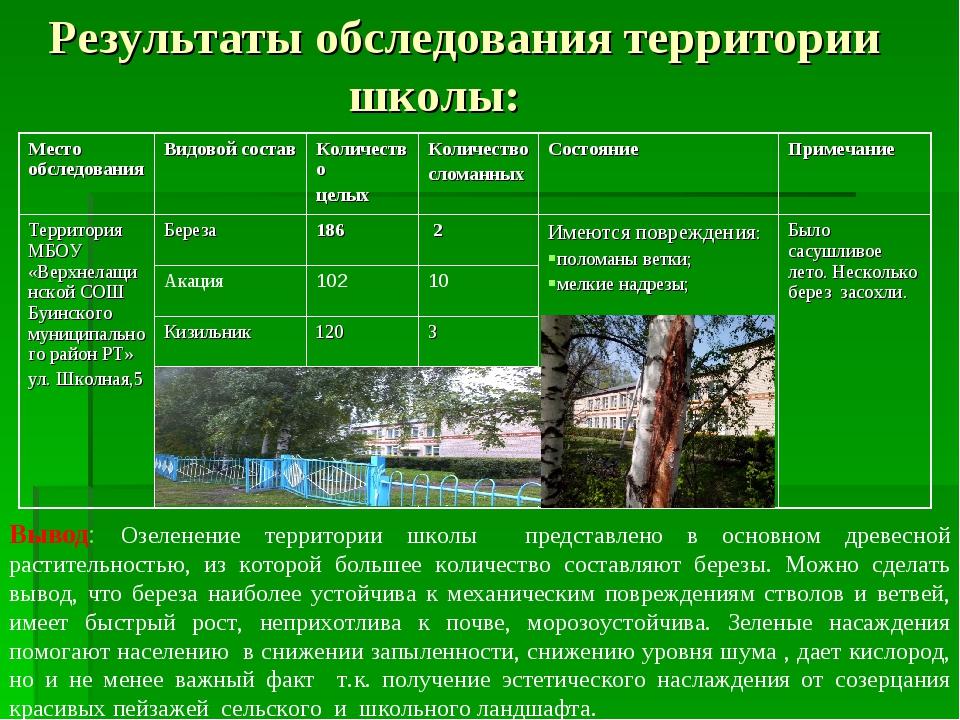 Результаты обследования территории школы: Вывод: Озеленение территории школы...