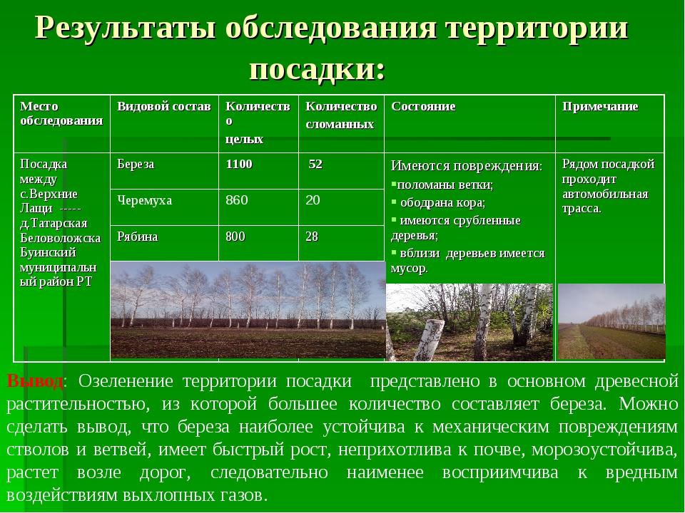 Результаты обследования территории посадки: Вывод: Озеленение территории пос...