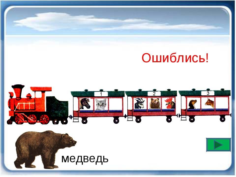Ошиблись! медведь