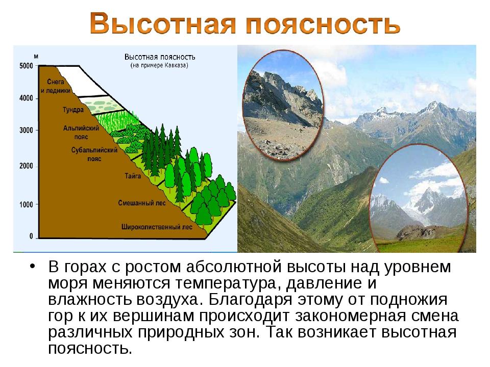 В горах с ростом абсолютной высоты над уровнем моря меняются температура, дав...