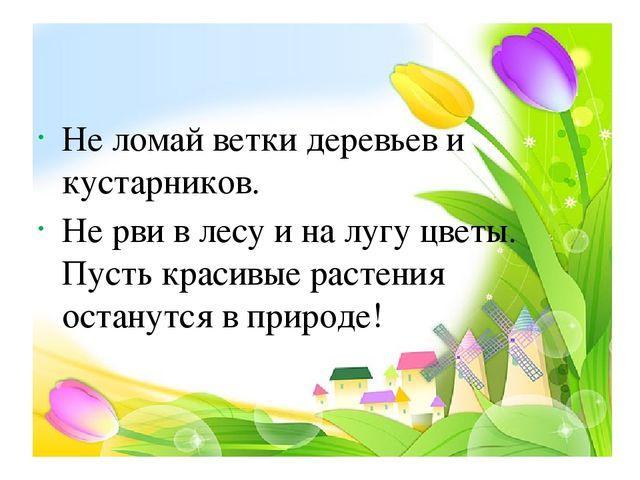 Не ломай ветки деревьев и кустарников. Не рви в лесу и на лугу цветы. Пусть...