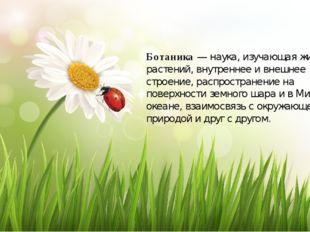 Ботаника — наука, изучающая жизнь растений, внутреннее и внешнее строение, ра