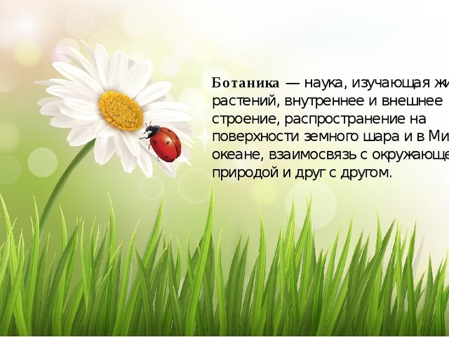 Ботаника — наука, изучающая жизнь растений, внутреннее и внешнее строение, ра...