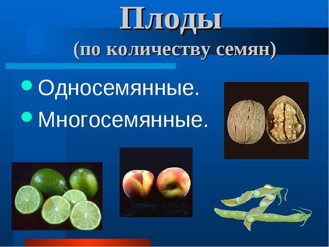 Плоды (по количеству семян) Односемянные. Многосемянные.