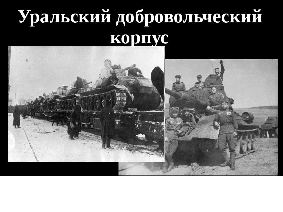 Более 115 тысяч заявлений – это в 12 раз больше Уральский добровольческий кор...