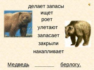 Медведь ищет берлогу. _______________ роет улетают запасает закрыли делает за