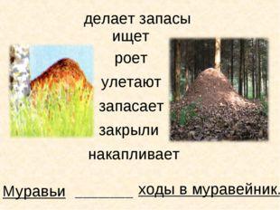 Муравьи ищет ходы в муравейник. _______________ роет улетают запасает закрыли