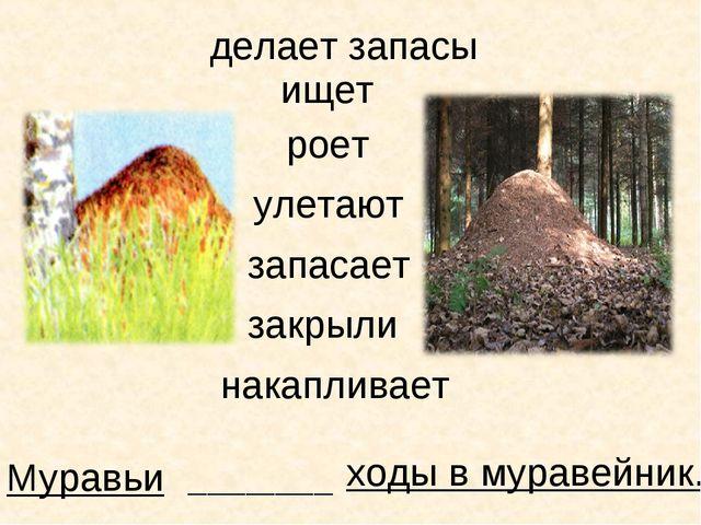 Муравьи ищет ходы в муравейник. _______________ роет улетают запасает закрыли...