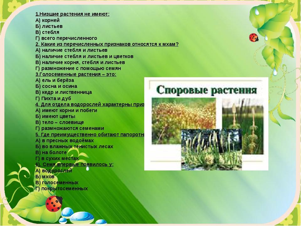 1.Низшие растения не имеют: А) корней Б) листьев В) стебля Г) всего перечисле...