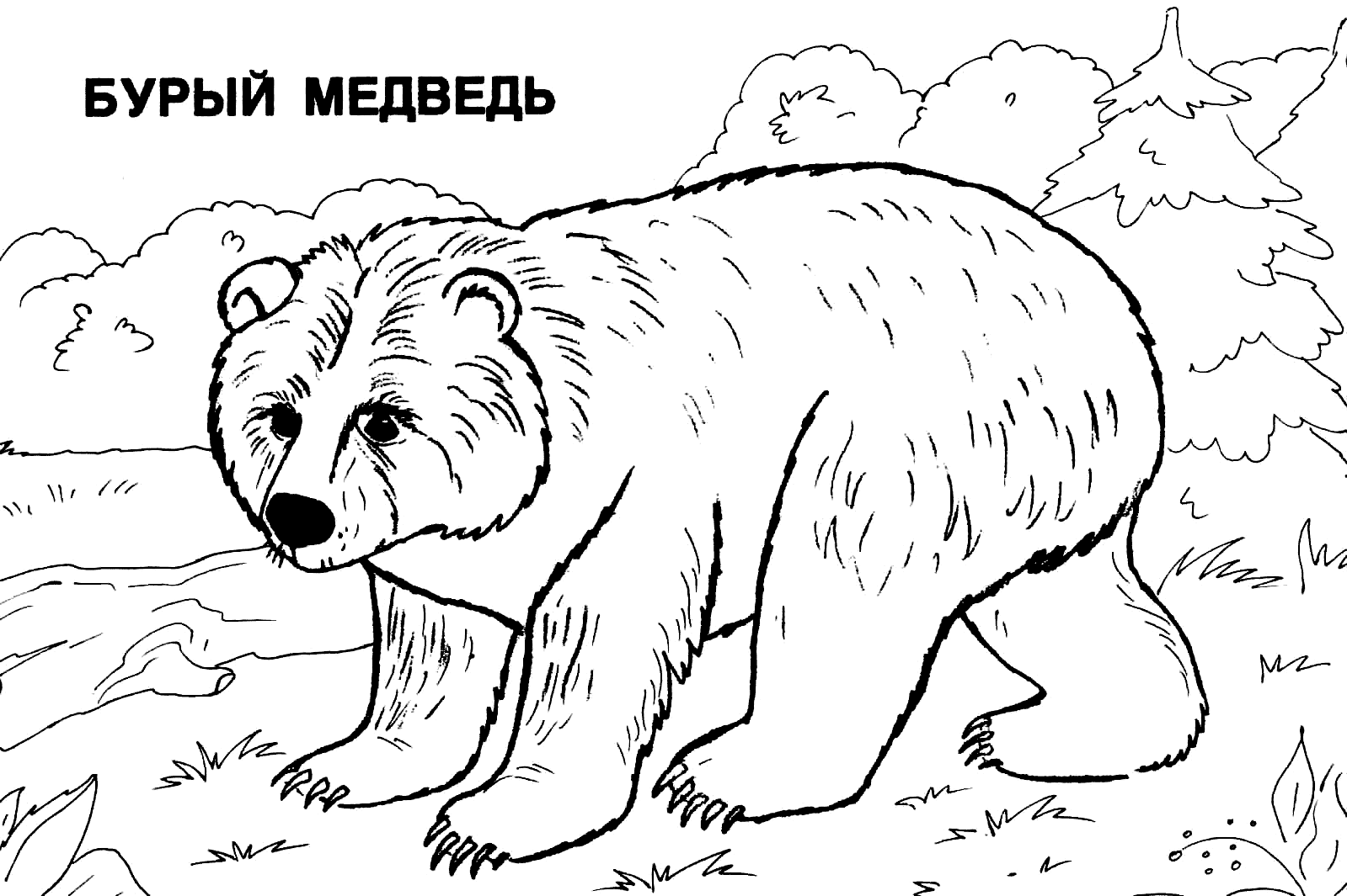Раскраска дядя фёдор кот и пёс