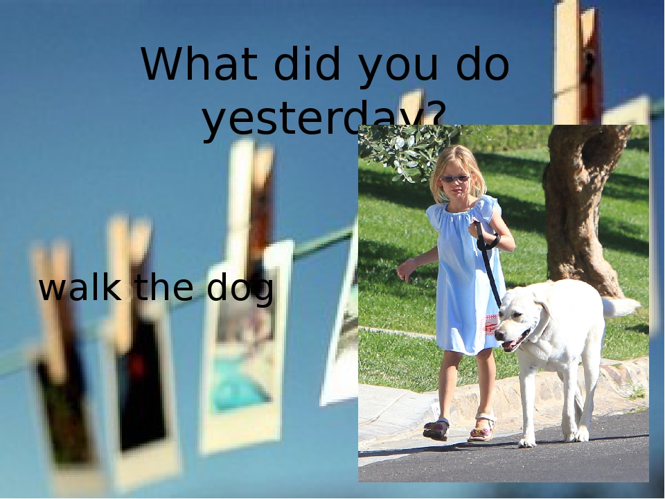 What did you do yesterday? walk the dog