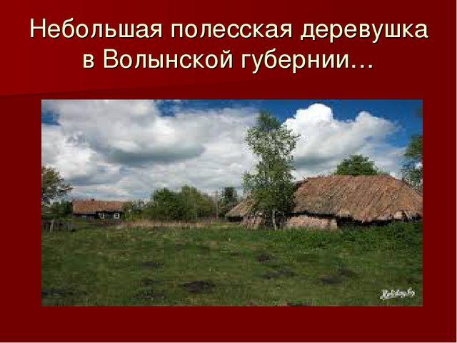 Небольшая полесская деревушка в Волынской губернии…