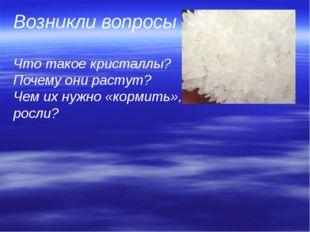Возникли вопросы  Что такое кристаллы?   Почему они растут?  Чем их нужно «ко