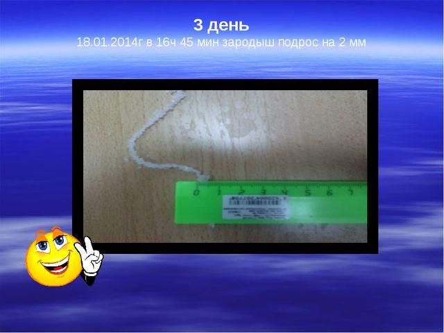 3 день  18.01.2014г в 16ч 45 мин зародыш подрос на 2 мм