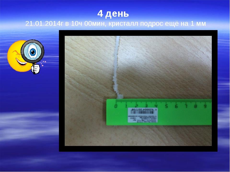 4 день   21.01.2014г в 10ч 00мин, кристалл подрос ещё на 1 мм