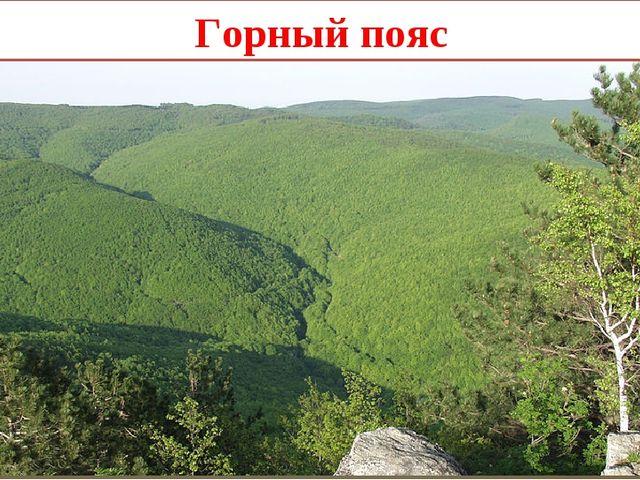 Горный пояс Gpavic