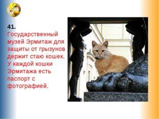 41. Государственный музей Эрмитаж для защиты от грызунов держит стаю кошек. У