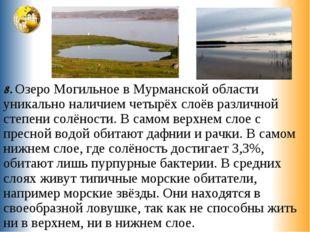 8. Озеро Могильное в Мурманской области уникально наличием четырёх слоёв разл