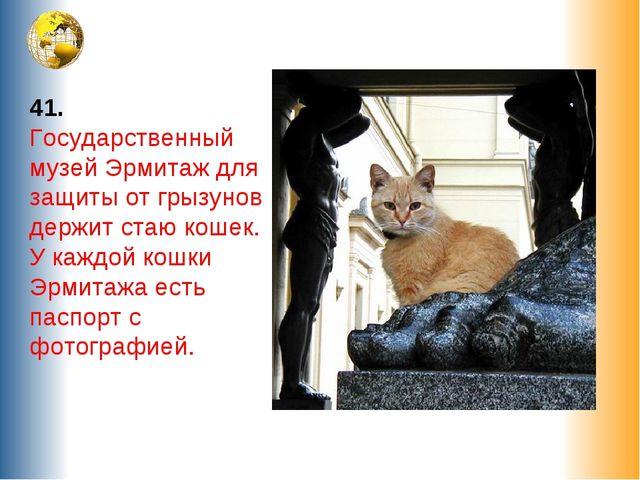 41. Государственный музей Эрмитаж для защиты от грызунов держит стаю кошек. У...