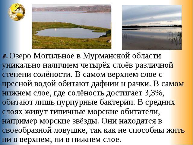 8. Озеро Могильное в Мурманской области уникально наличием четырёх слоёв разл...