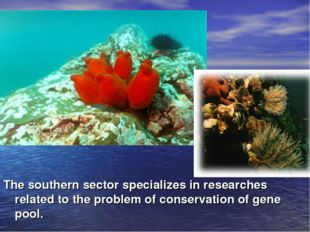 The southern sector specializes in researches related to the problem of conse
