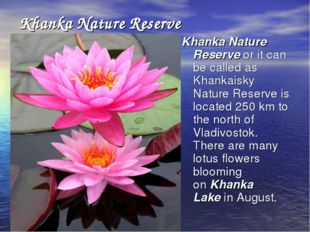 Khanka Nature Reserve Khanka Nature Reserve or it can be called as Khankaisky