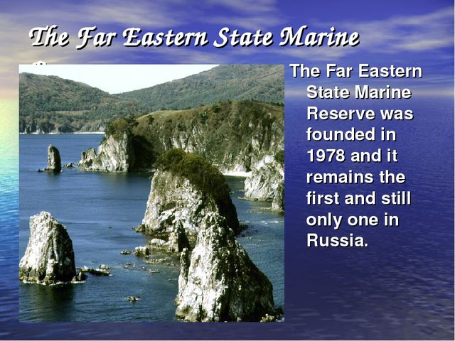 The Far Eastern State Marine Reserve. The Far Eastern State Marine Reserve wa...