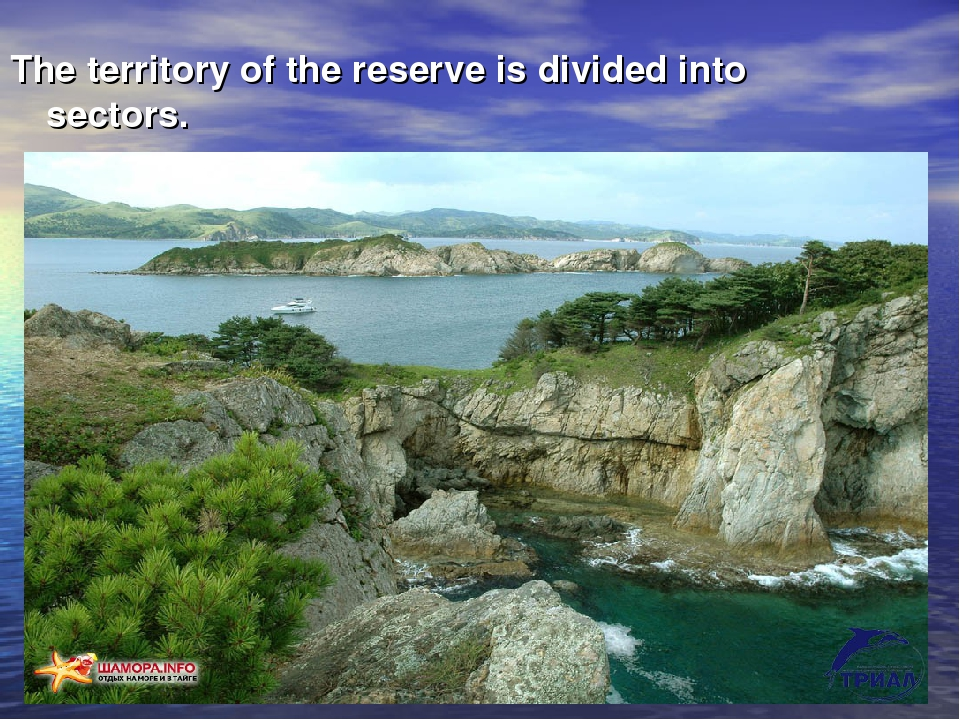 The territory of the reserve is divided into sectors.