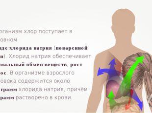 В организм хлор поступает в основном в виде хлорида натрия (поваренной соли).