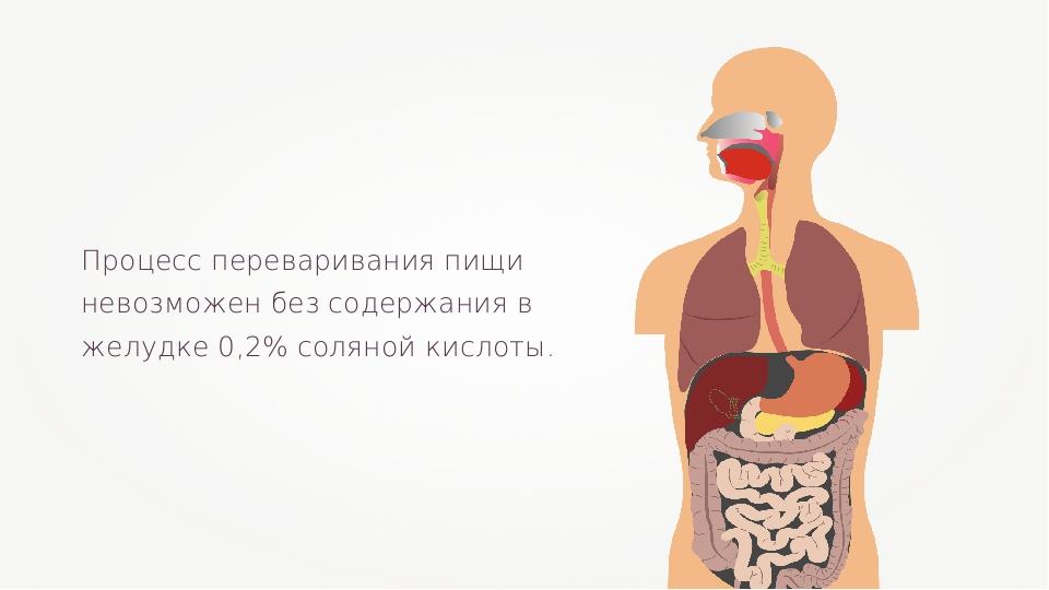 Процесс переваривания пищи невозможен без содержания в желудке 0,2% соляной к...