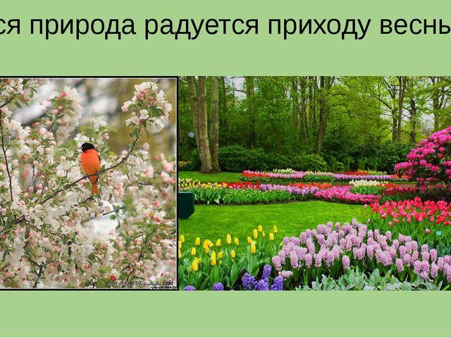 Вся природа радуется приходу весны.