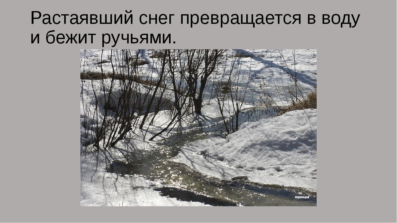 Растаявший снег превращается в воду и бежит ручьями.