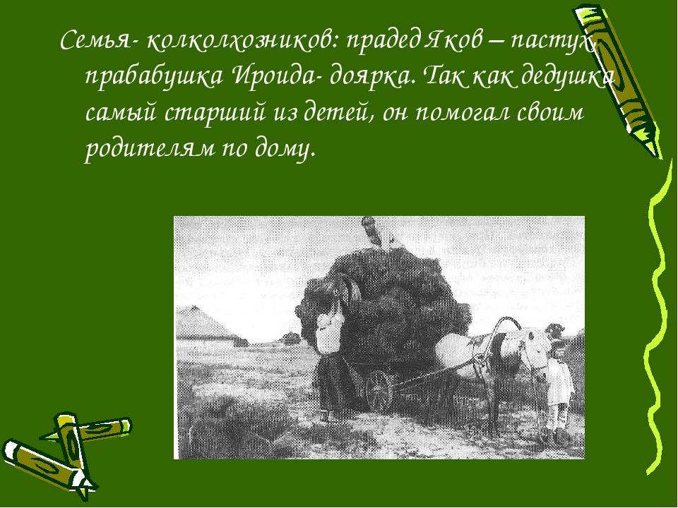 Семья- колколхозников: прадед Яков – пастух, прабабушка Ироида- доярка. Так к...