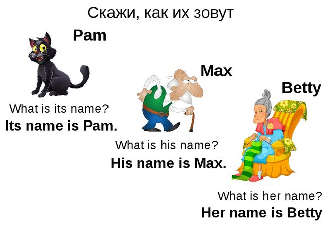 Скажи, как их зовут Max Pam What is its name? What is his name? What is her n...