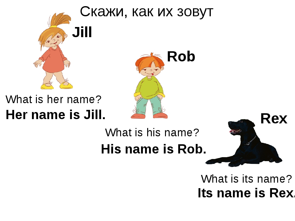 Скажи, как их зовут Rex Rob Jill What is her name? What is his name? What is...
