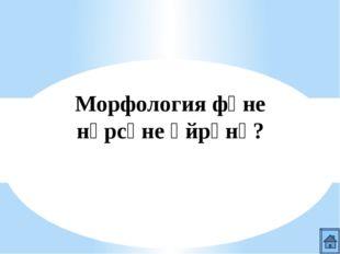 Морфология фәне нәрсәне өйрәнә?