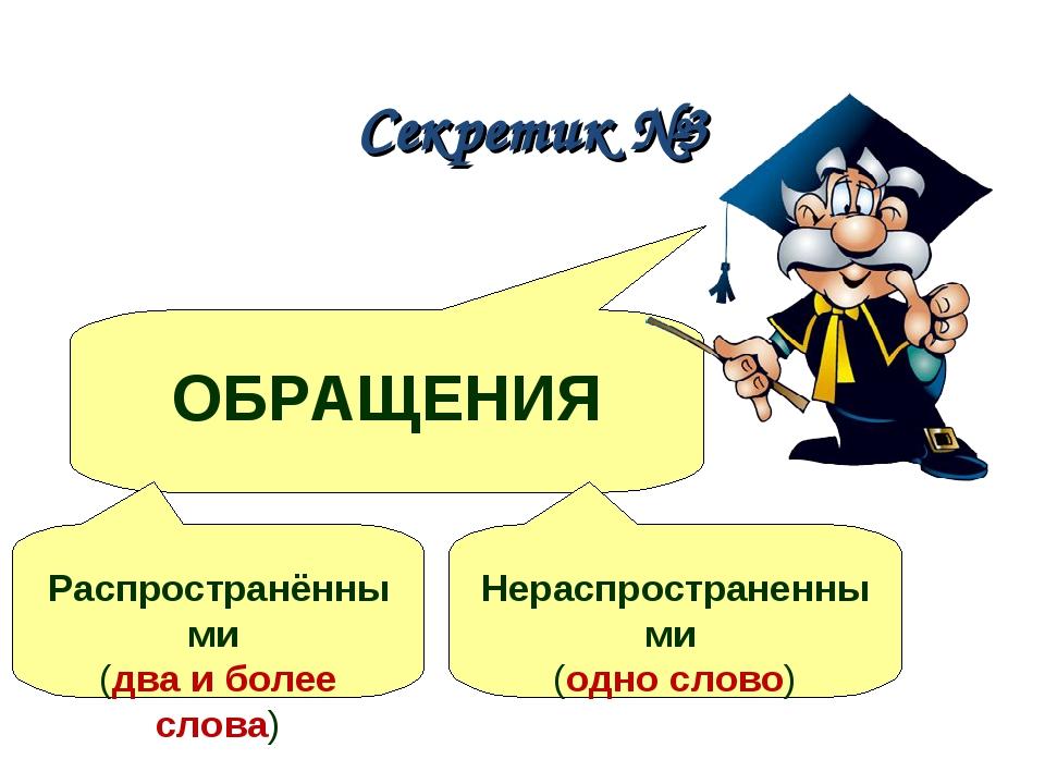 Секретик №3 ОБРАЩЕНИЯ Распространёнными (два и более слова) Нераспространенны...