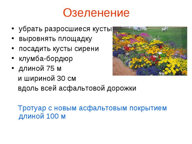 Озеленение убрать разросшиеся кусты выровнять площадку посадить кусты сирени...
