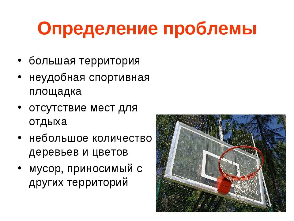 Определение проблемы большая территория неудобная спортивная площадка отсутст...