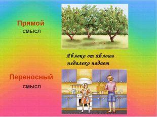 Прямой смысл Переносный смысл Яблоко от яблони недалеко падает