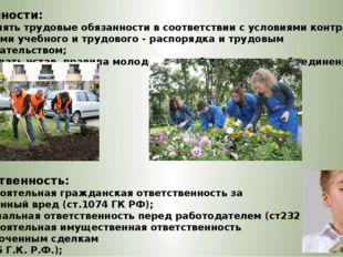 Обязанности: – выполнять трудовые обязанности в соответствии с условиями конт