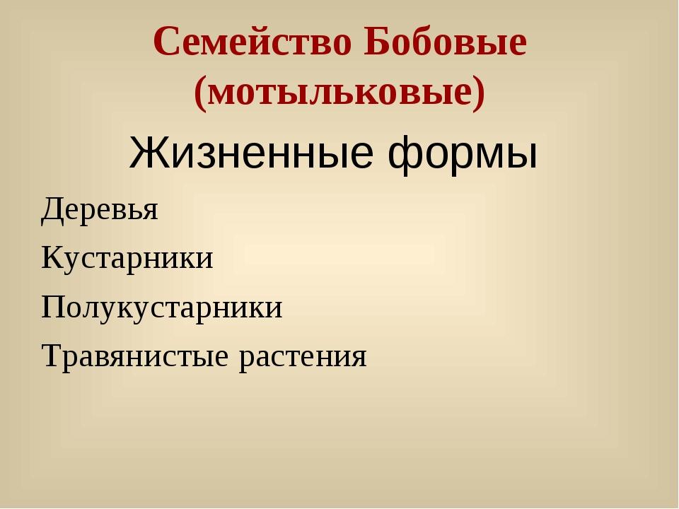 Семейство Бобовые (мотыльковые) Жизненные формы Деревья Кустарники Полукустар...