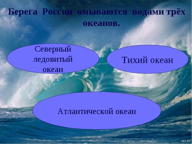 Северный ледовитый океан Тихий океан Атлантической океан Берега России омываю...