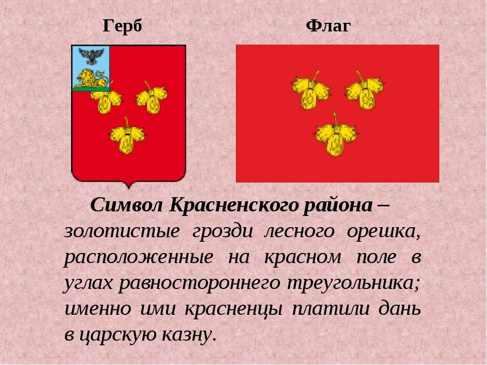 Герб Флаг Символ Красненского района – золотистые грозди лесного орешка, расп...