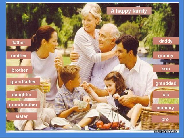 grandmother granny mummy father sister mother bro daddy brother sis grandfath...
